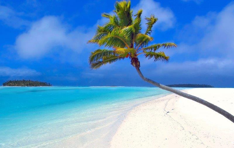 Dominican-Bay